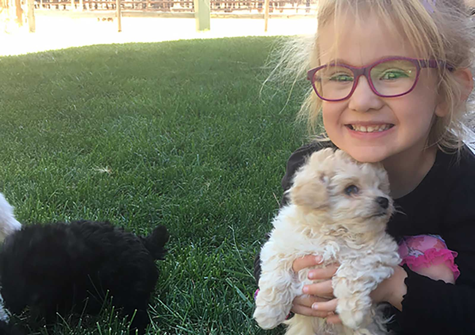 Naomi-and-Puppy-Web-2